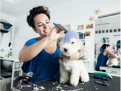 5 dicas testadas e aprovadas de marketing local para pet shops